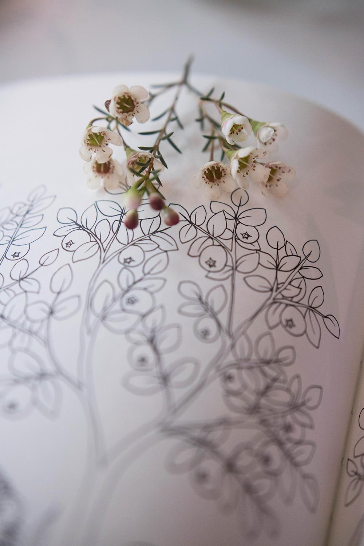 Målarbok Flora av Maria Trolle
