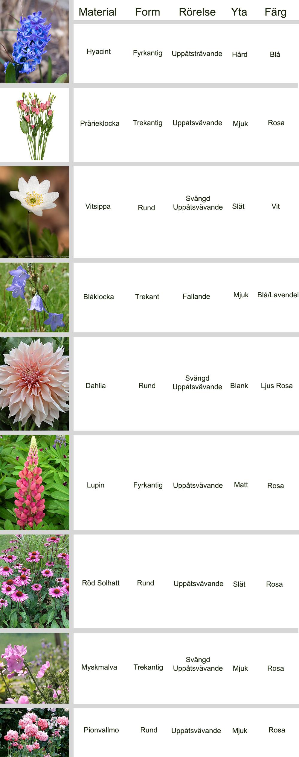 Floristutbildning: Hemläxa 3 Form