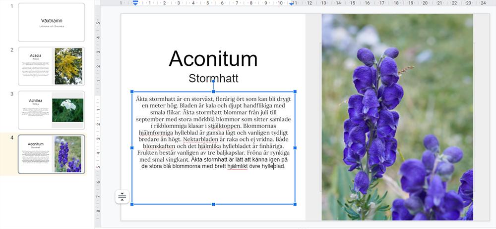 Mitt mål denna veckan är att lära mig 18 olika växter och deras latinska namn. Googles slides.